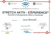2011-11 Stretch activ-experience