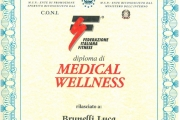 2013-03 Medical Wellness